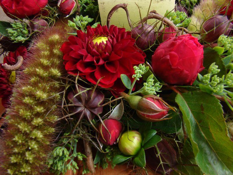 fleurs013.jpg